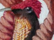Colibrí Rubí