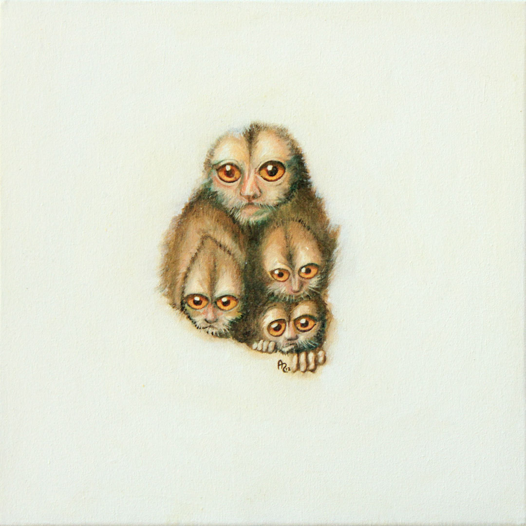 Monos Nocturnos
