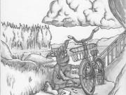Arreglando la Bici